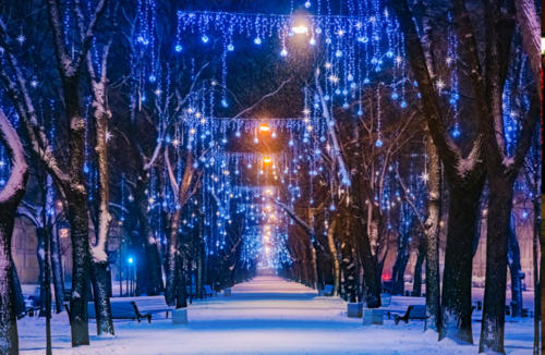 """Оформление деревьев """"Ночное небо"""""""